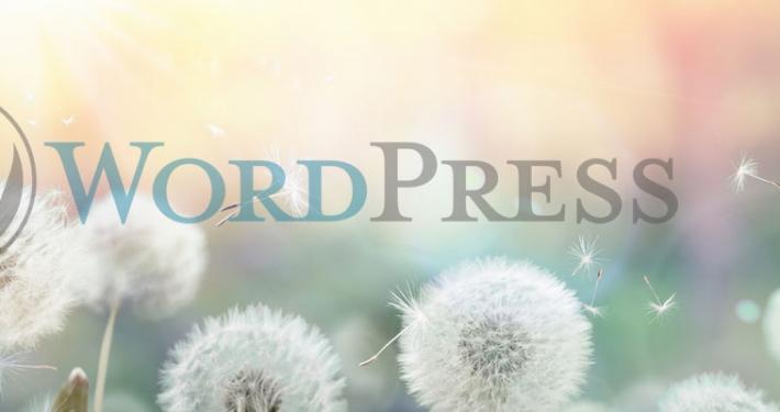 assistenza wordpress lecco como milano monza