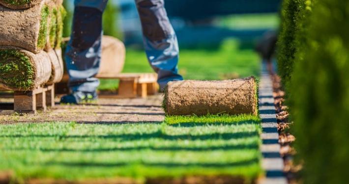 Creazione sito web Giardiniere