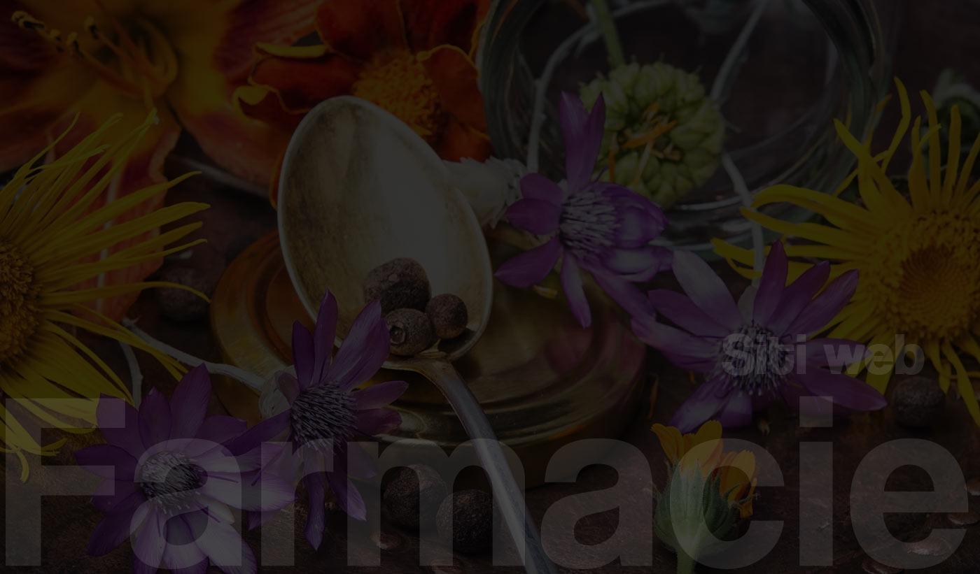 Siti web Farmacie